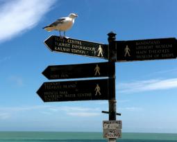 De patstelling van persoonlijke keuzes in je leven